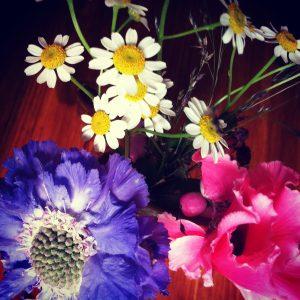 vrolijke bloemetjes