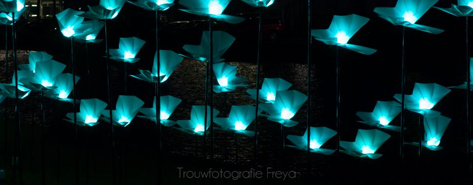 Amsterdam Light Festival vlinder lampjes