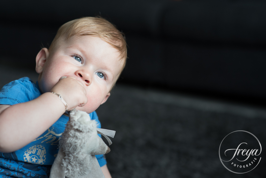 portret dreumes met knuffeltje door fotograaf Freya Fotografie