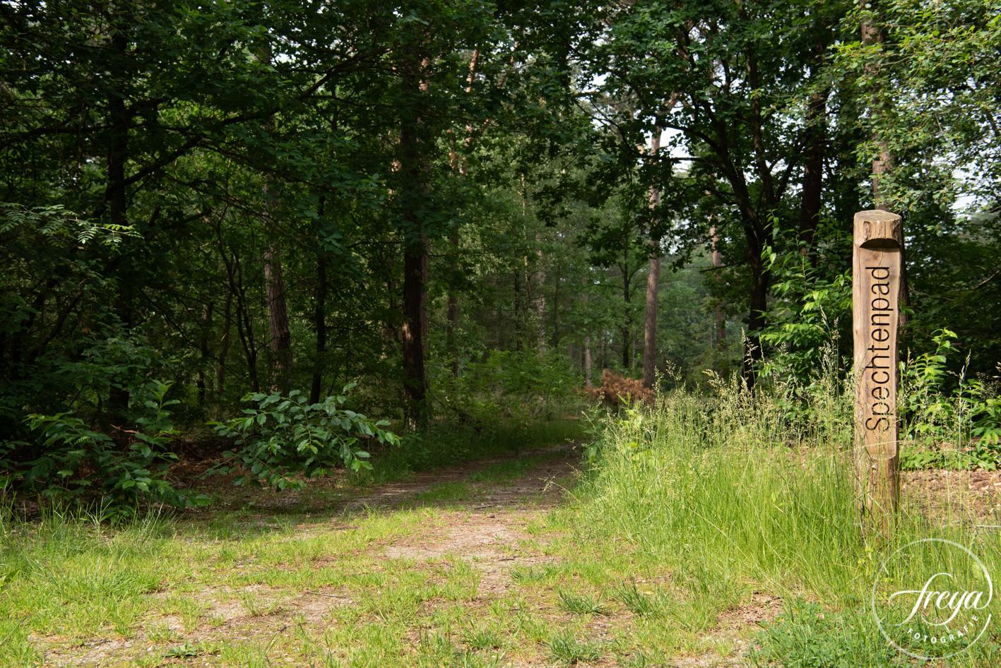 Natuurbegraafplaats Maashorst te Schaik - naambordje naast pad