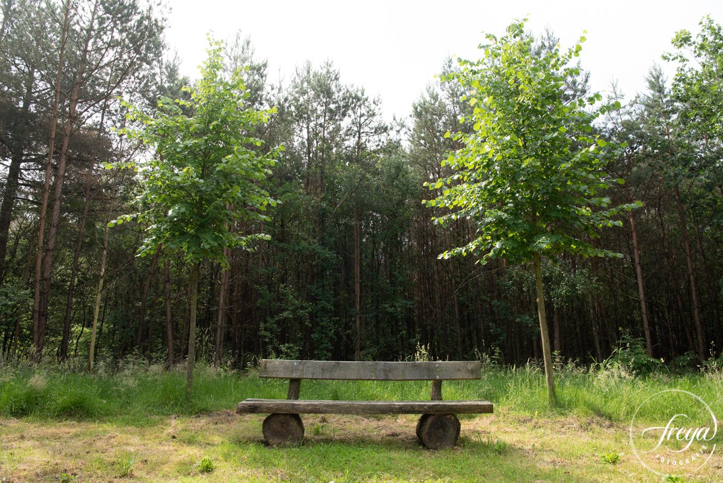 Natuurbegraafplaats Maashorst te Schaik - bankje